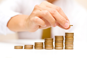 Budget ERP-System
